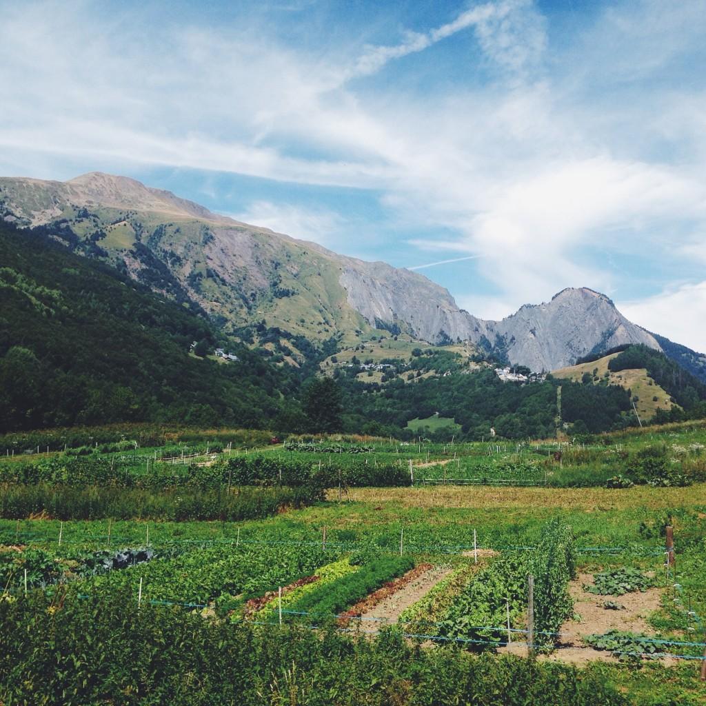 champs et potagers au rivier d'ornon