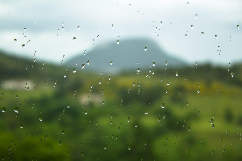 montagne risou baronnies provençales
